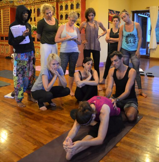 Learning hands-on assists yoga training nepal